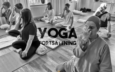 18/8 – 6/10 Yoga Fortsättningskurs tema Prana & pranayama