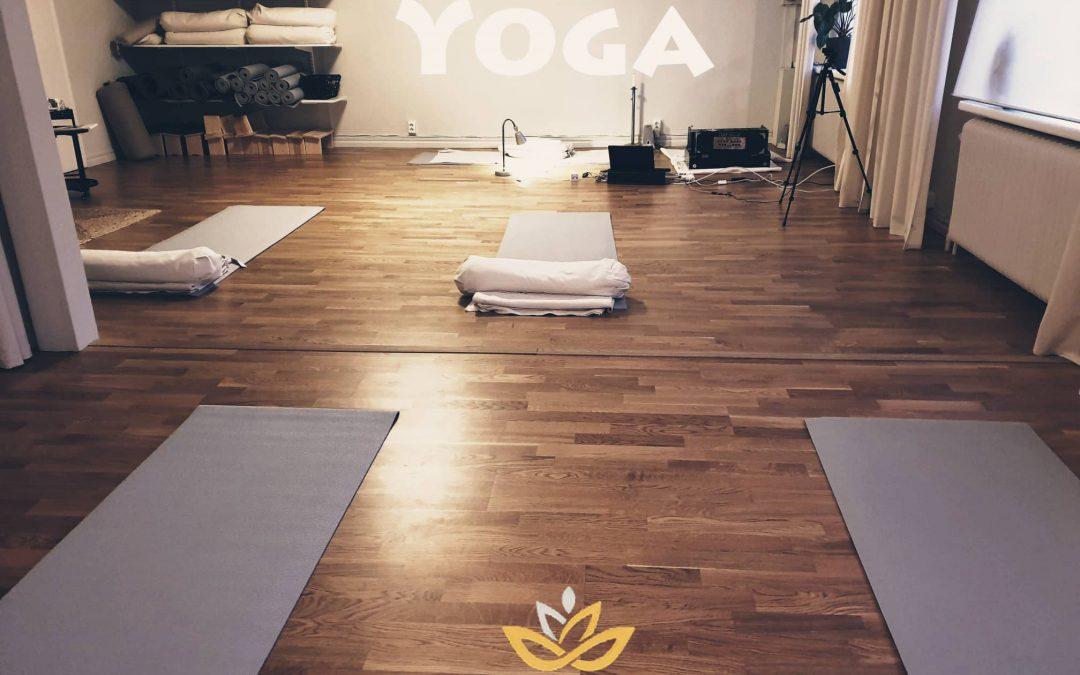 Nya yoga grundkurser på lätt och medelnivå startar onsdag 20 januari