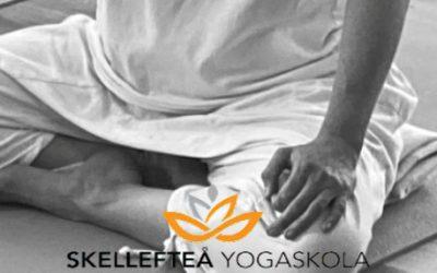 Lugn och balans med Yoga på lördag 6 februari – Klassisk yoga på grundnivå