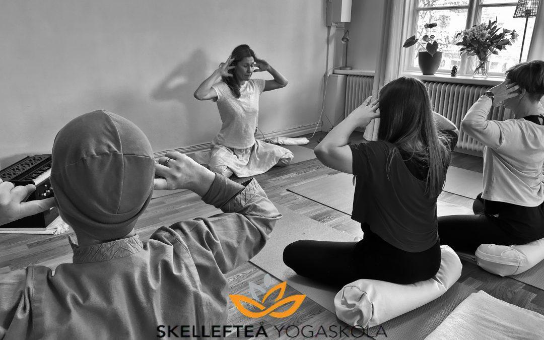 Ny kursstart onsdag 24e mars – Yoga på grundnivå