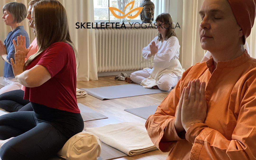 Yoga för hela dig – tisdag 6e och/eller onsdag 7e juli