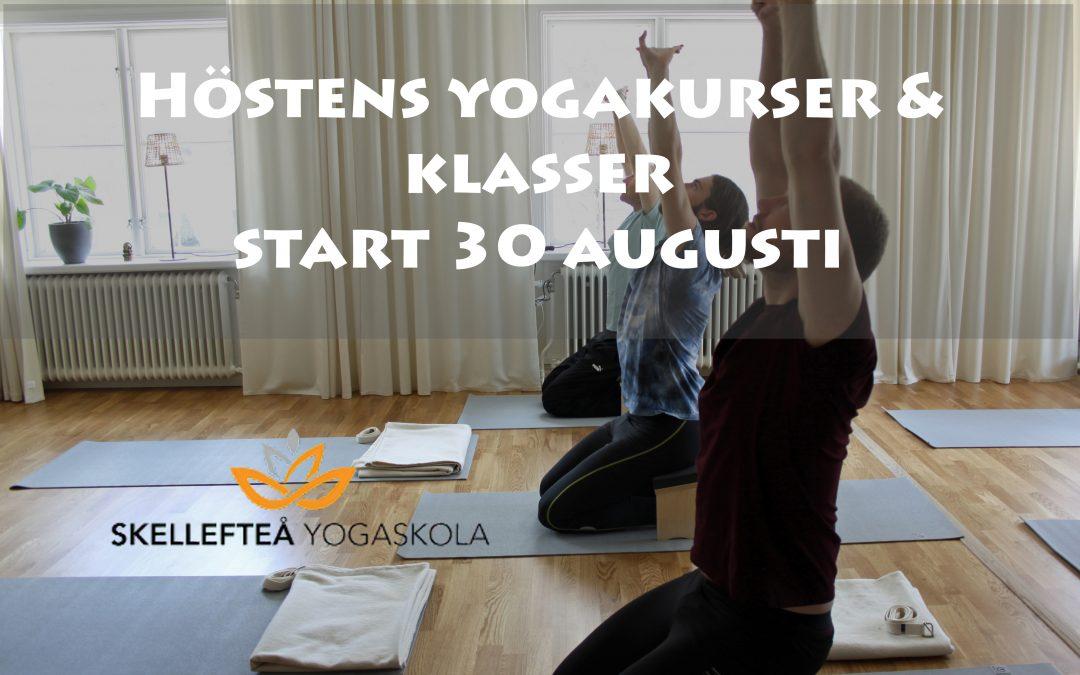 Höstens yogakurser/klasser och gratis intro & provlektion startar i augusti